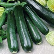 courgette marrow. Black Bedroom Furniture Sets. Home Design Ideas
